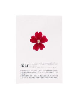 Dried red verbena edible flowers - Neworks