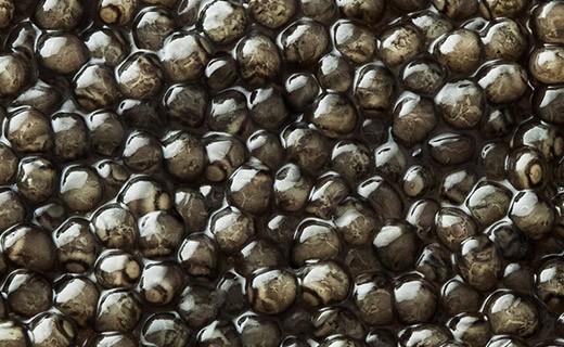 Royal Beluga Caviar 50g - Kaviari