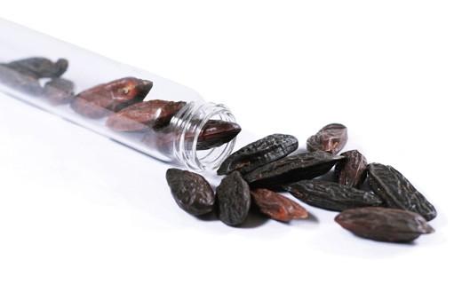 Tonka Bean - Sarabar