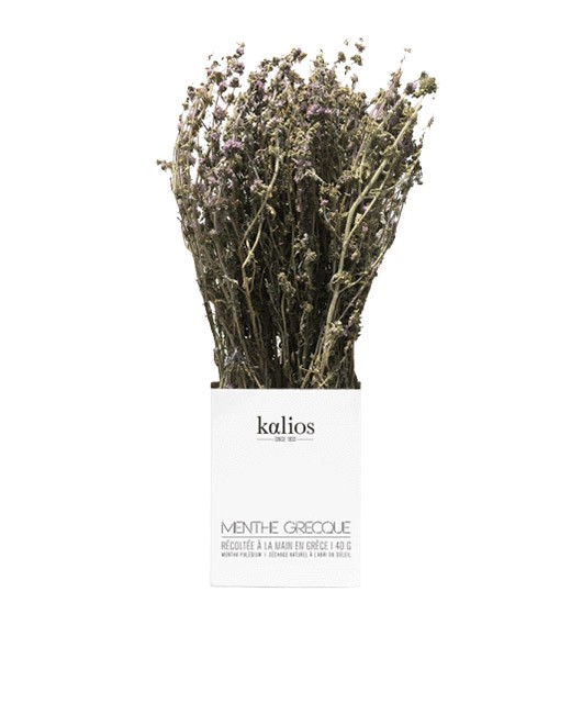 Greek pennyroyal branch - Kalios