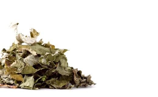 Herbal Tea Fraîcheur d'été - Les Jardins de Gaïa