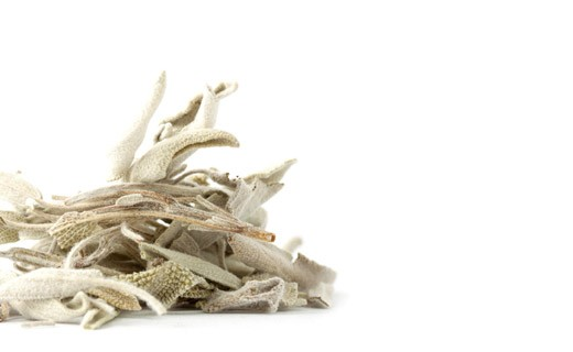 Sage Tea - Les Jardins de Gaïa